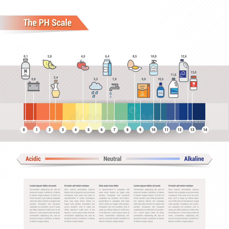 The PH scale. With examples products and foods and text copy space at bottom