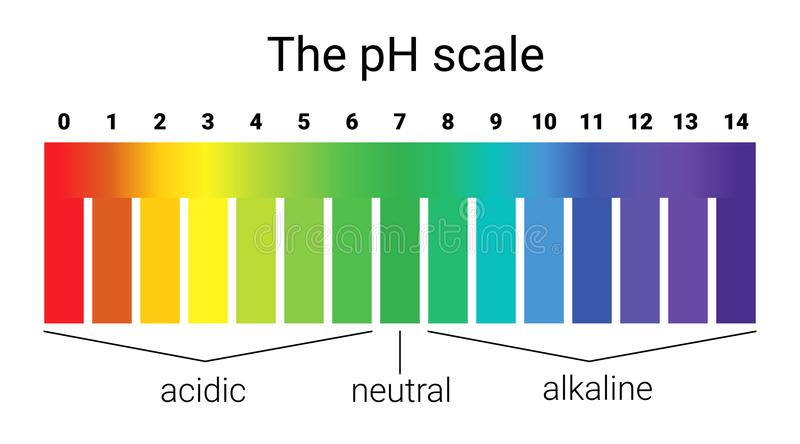 Ph scale. infographic acid-base balance. scale for chemical analysis acid base. Vector illustration. colorful graph for test stock illustration