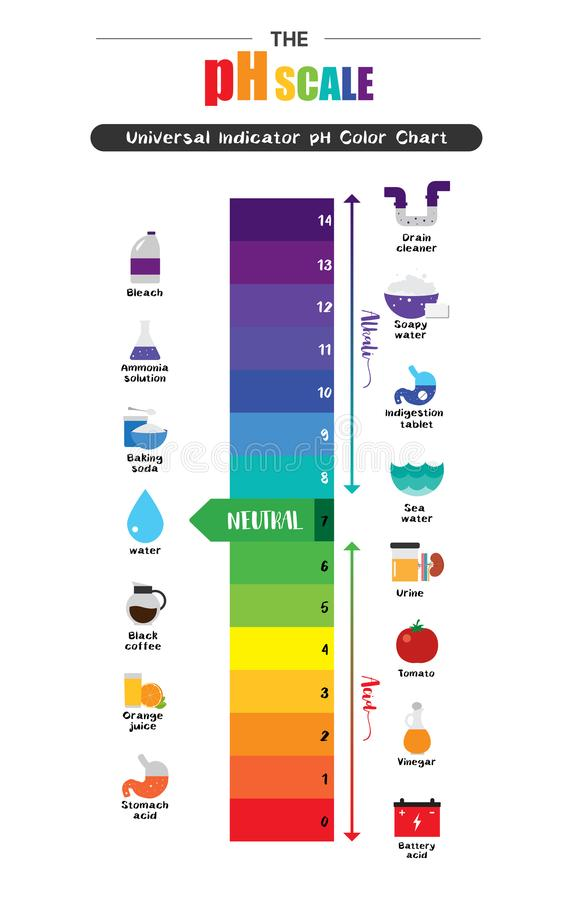 The pH scale Universal Indicator pH Color Chart diagram royalty free illustration