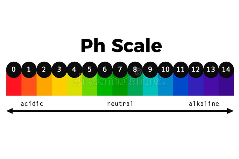 Ph scale vector chart. Ph indicator vector test acid alkaline balance royalty free illustration