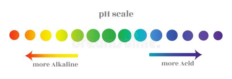 Ph schaal met gradatie van verschillende die niveaus van de zuurheid van het milieu, in cirkels met een kleur worden verfraaid royalty-vrije illustratie