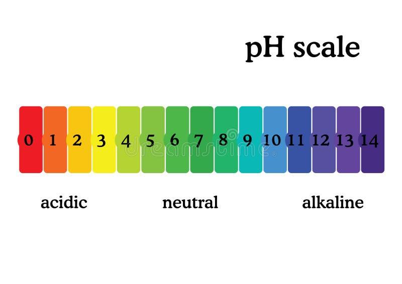 PH schaaldiagram met overeenkomstige zuurrijke of alkalische waarden De universele pH grafiek van de indicatorpapierkleur royalty-vrije illustratie