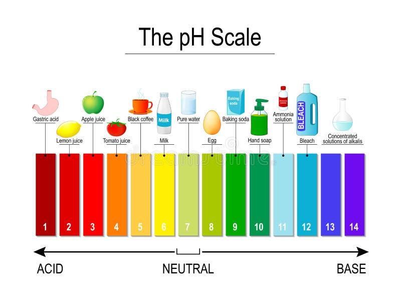 PH skala Ogólnoludzki wskaźnik pH Próbni paski royalty ilustracja