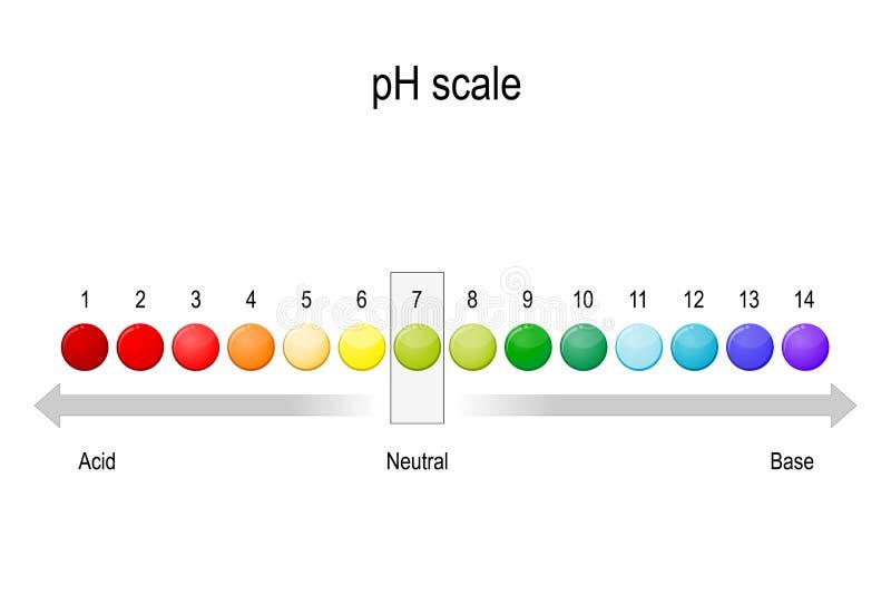 Ph wartości skala bazy równowaga ilustracja wektor
