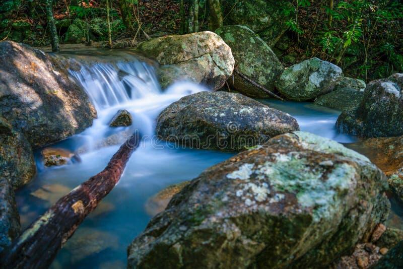 Phaeng vattenfall med trädet Koh Phangan arkivfoto