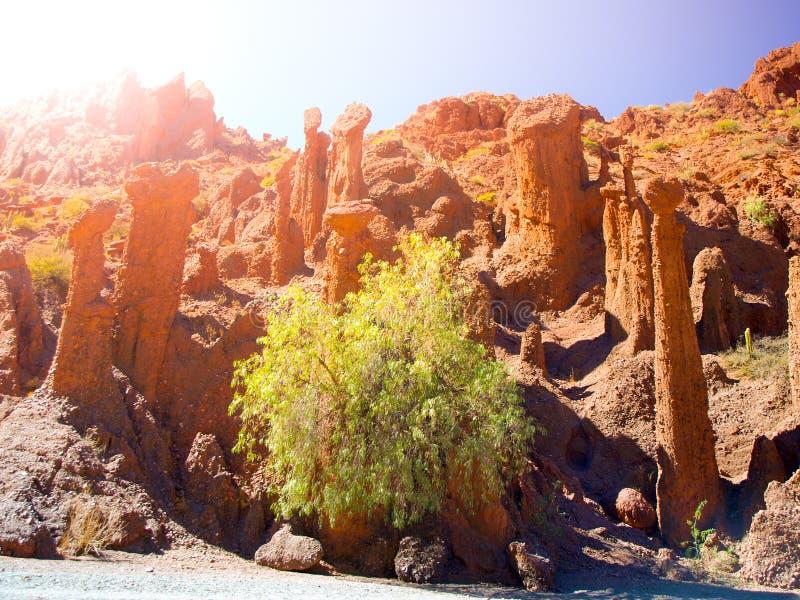 Phallic σχηματισμοί βράχου μορφής κόκκινοι Valle de Los Machos - Quebrada de Palmira κοντά σε Tupiza, βολιβιανές Άνδεις, νότος στοκ φωτογραφία με δικαίωμα ελεύθερης χρήσης