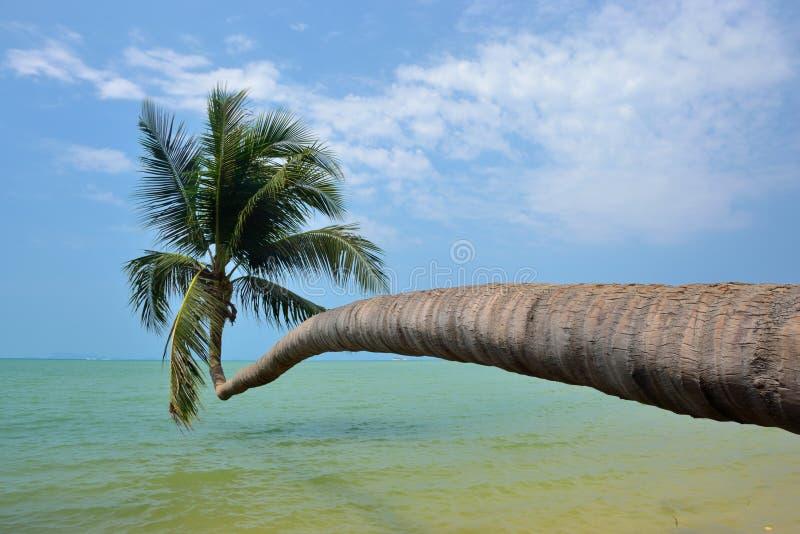 phangan海滩的ko 免版税库存照片