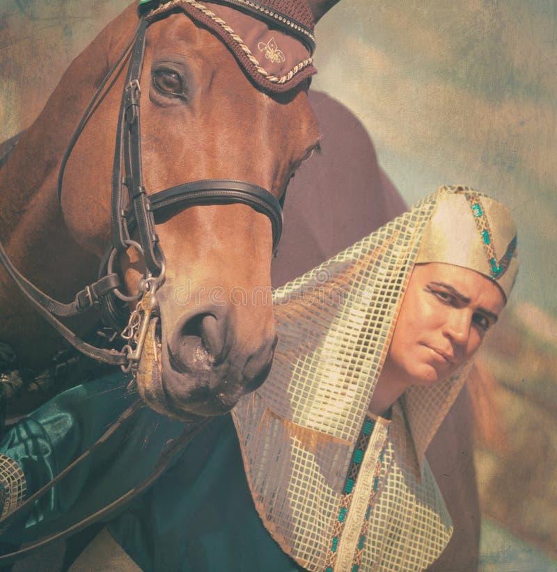Pharaoh com o vintage do cavalo tonificado fotografia de stock