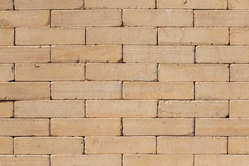 Pharaoh Temple Wall, gult Bricks royaltyfri bild