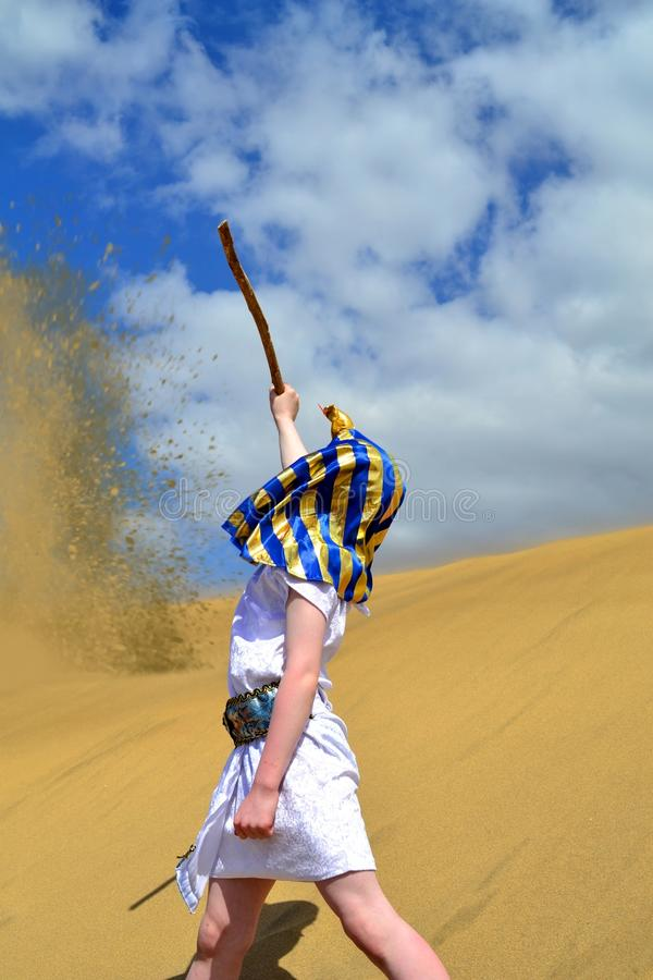 Pharaoph dans la fureur photographie stock libre de droits