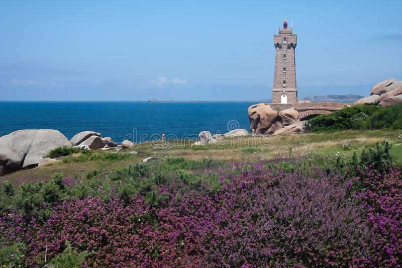 Phare à la côte de Brittany avec la bruyère pourprée photos stock