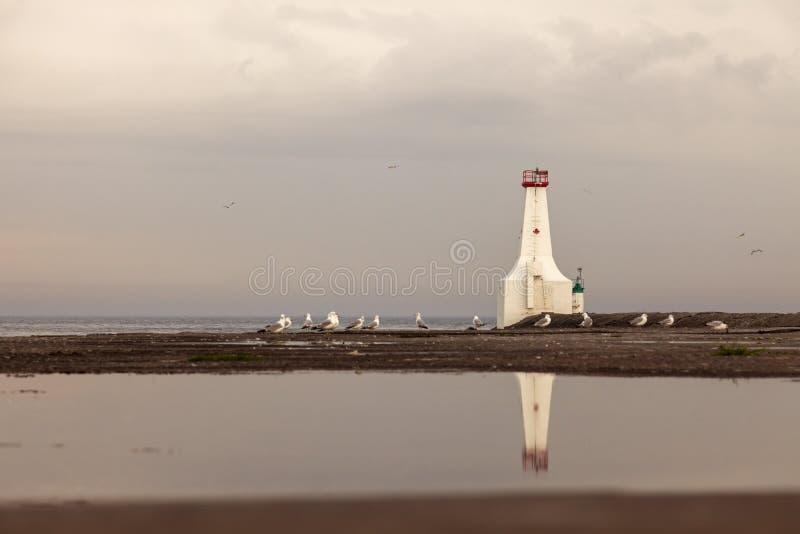 Phare est de musoir de Cobourg par le lac Ontario photographie stock