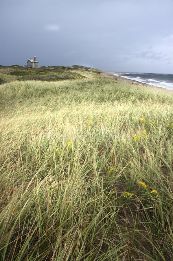 Phare et océan avec le champ herbeux dans le premier plan photographie stock libre de droits