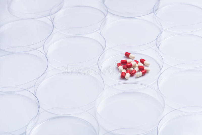Pharmaceutical research stock image