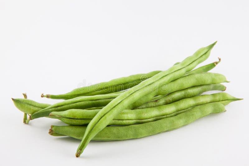 Phaseolus do feijão verde vulgar foto de stock