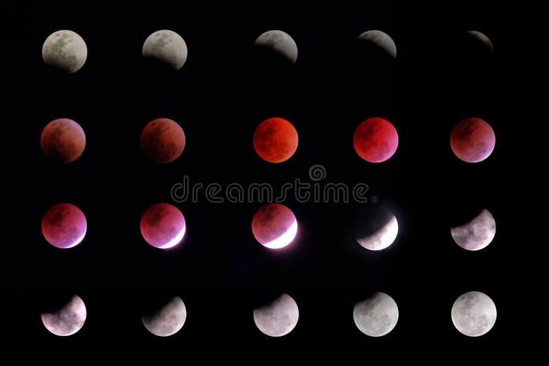 Phases d'éclipse lunaire photographie stock libre de droits