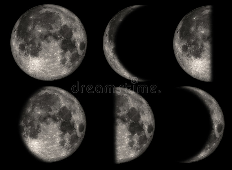 The phases of the Moon vector illustration