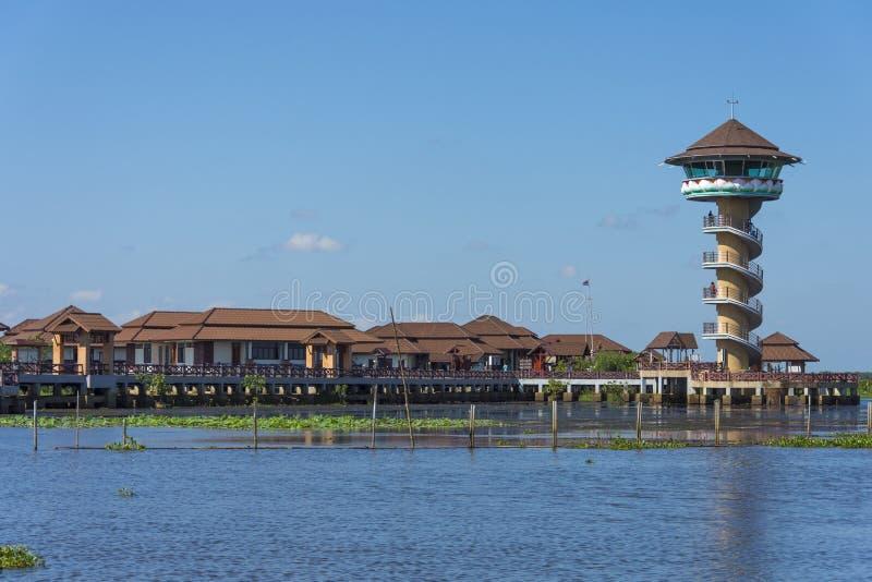 Phatthalung的泰国Thale noi湖 免版税图库摄影