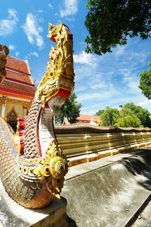 Phaya naga są naga, mitycznymi jak istoty, wierzyć miejscowymi żyć w Mekong rzece fotografia stock