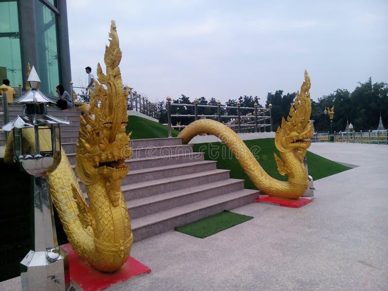 Phaya ormkonung arkivfoton