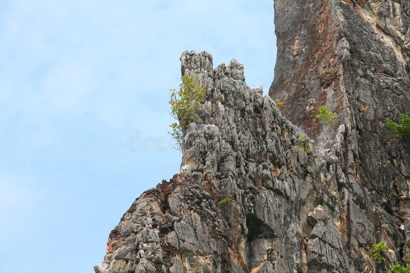 Phe Phe Island Royalty Free Stock Image