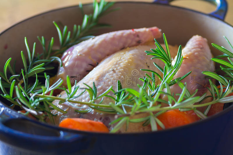 Pheasant in cooking pot. Prepared pheasant in blue cooking pot with carrots and rosemary stock image