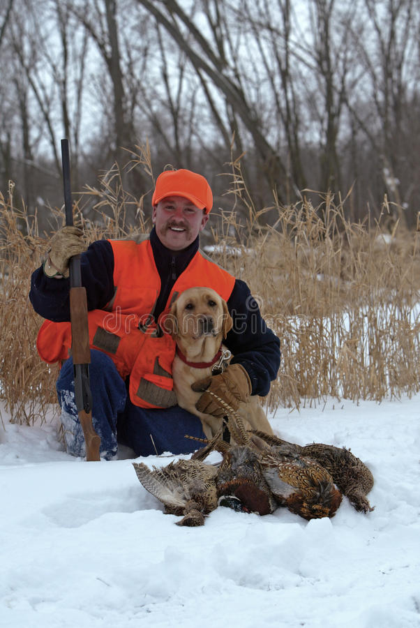 Download Pheasant Hunter And Labrador Retriever. Stock Photo - Image: 32184462