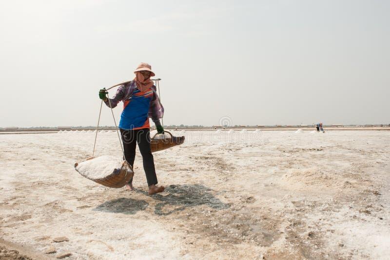 PHETCHABURI TAJLANDIA, FEB, - 13: Tajlandzcy pracownicy niesie sól od soli uprawia ziemię na Luty 13, 2015 w Phetchaburi, Tajland fotografia stock