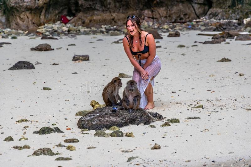Phi Phi Island, Thailand - November 24 2019:  An unidentified woman posing for a photo with a monkey at Monkey Beach in Phi Phi. Islands royalty free stock photography