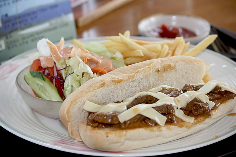 Philadelphia steak and cheese sub, complete meal. Philly steak and cheese sub, plate of vegetable salad and French fries on a round white flowered plate royalty free stock photography