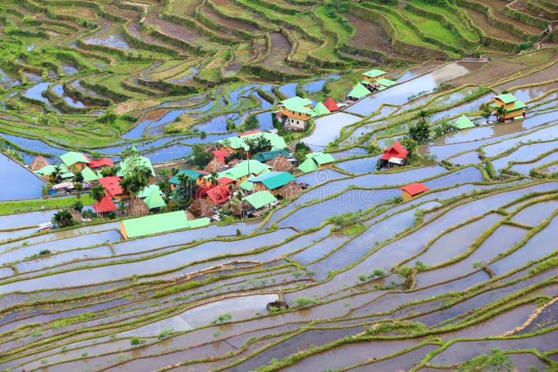 Philippinen-Reisterrassen lizenzfreies stockbild