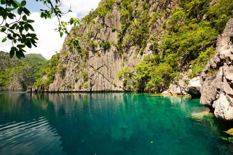 philippines Île de Coron Lac barracuda photos libres de droits