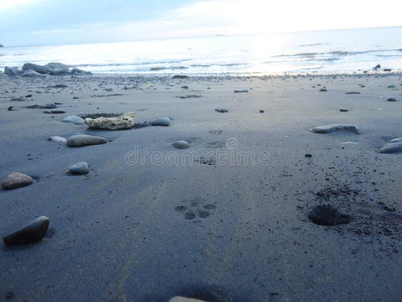Philippines beach royalty free stock photo