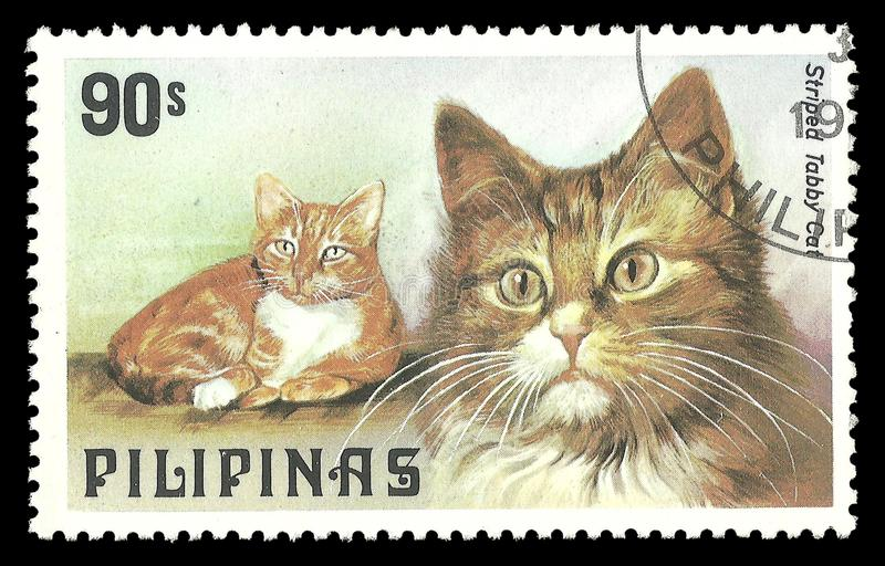Philippines, Cats, Striped Tabby. Philippines - stamp 1979, Memorable issue Fauna, Series Dogs and Cats, Striped Tabby, Felis silvestris catus stock photos