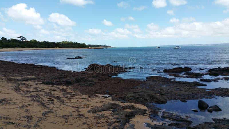 Phillip Island fotos de stock royalty free