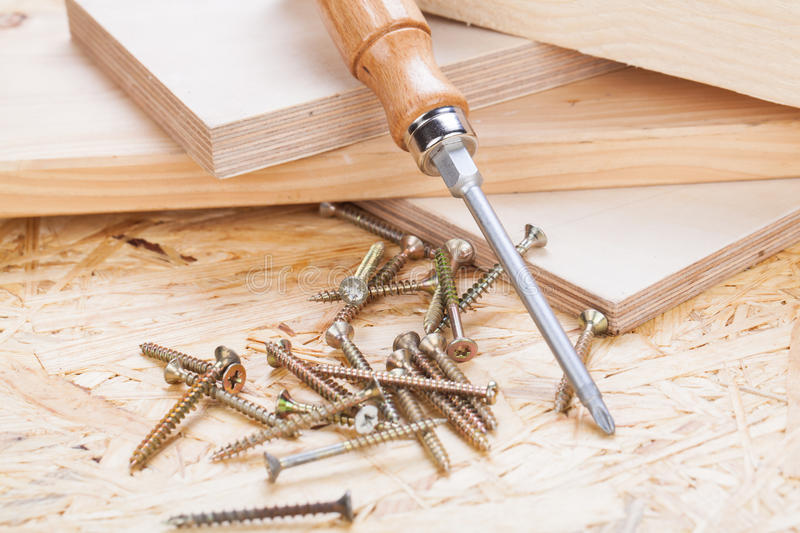 Phillips head screwdriver and wood screws stock photo