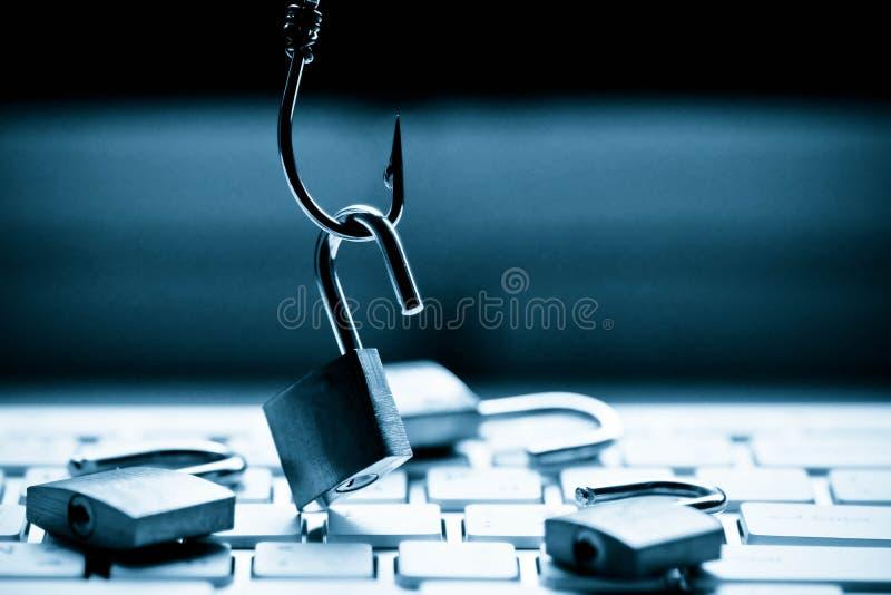 Phishing stockbilder