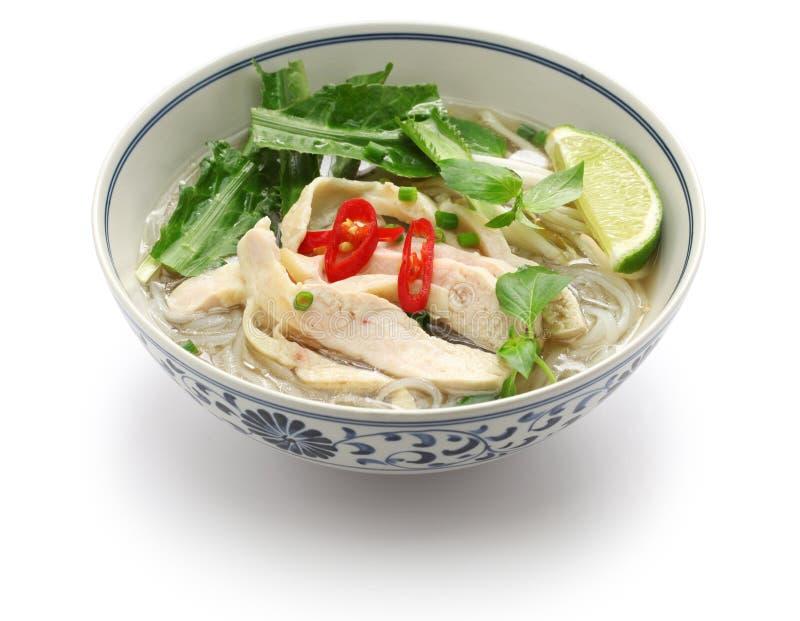 Pho GA, minestra di pasta di riso vietnamita del pollo immagini stock libere da diritti
