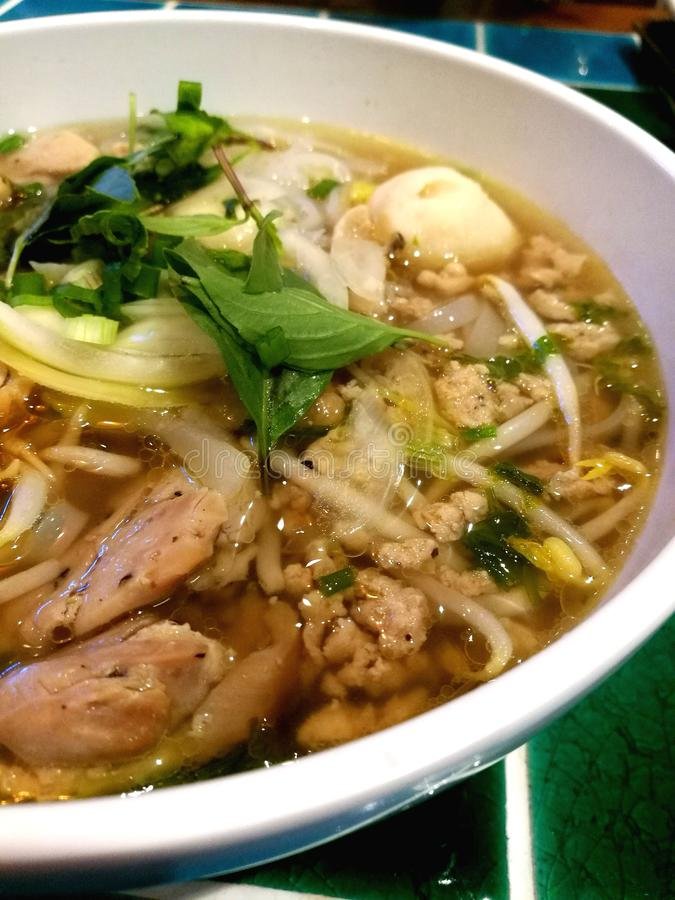 Pho Ga Vietnamese Chicken Noodle Soup. A light chicken broth with banh pho noodles and tender poached chicken royalty free stock images