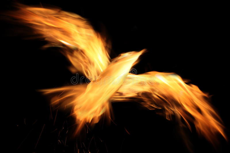 Phoenix. Burn phoenixl on the black background