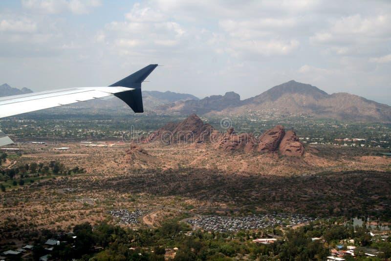 Phoenix stock photos