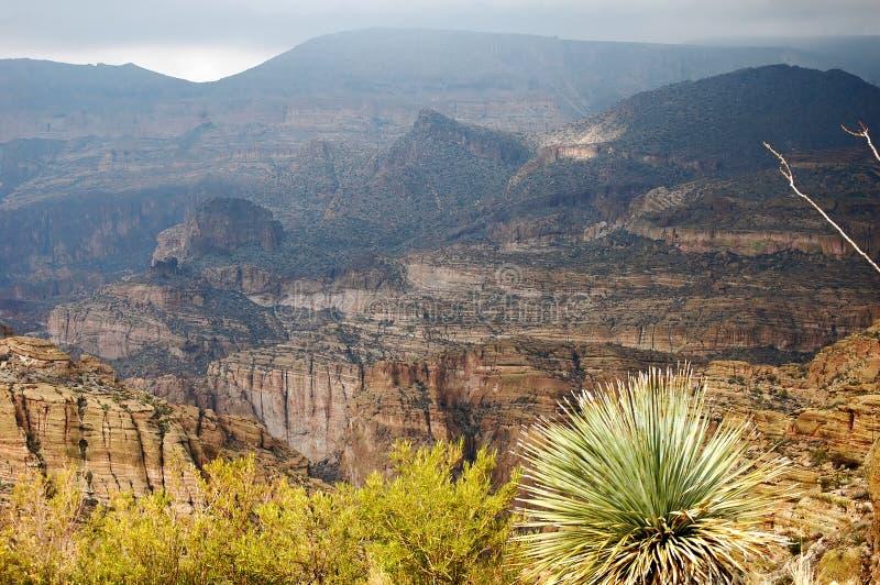 Phoenix, Arizona. Apache-Hinterlandschaft stockfotografie