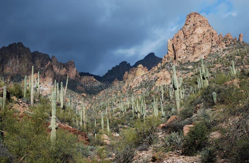 Phoenix, Arizona. Apache-Hinterlandschaft lizenzfreie stockbilder