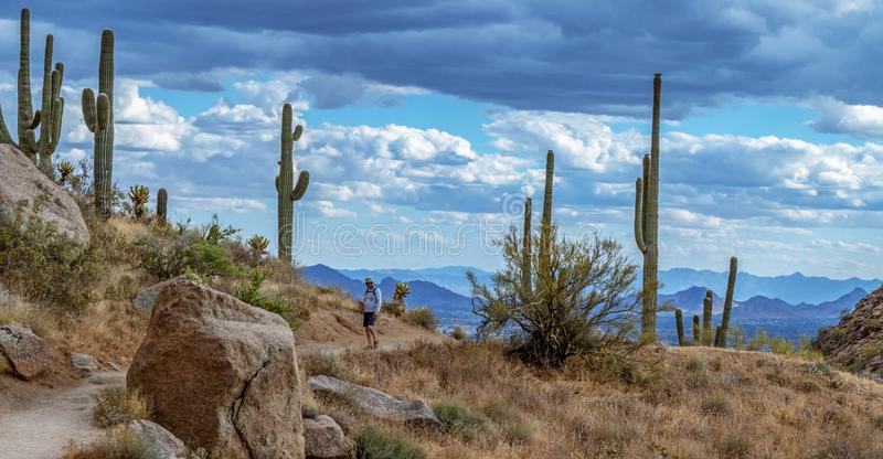 Man Hiking Up Desert Trail In Early Morning Near
