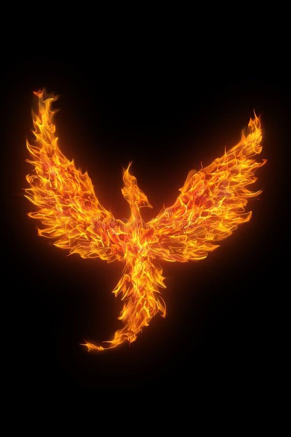 Phoenix bruciante isolata sopra il nero immagine stock libera da diritti