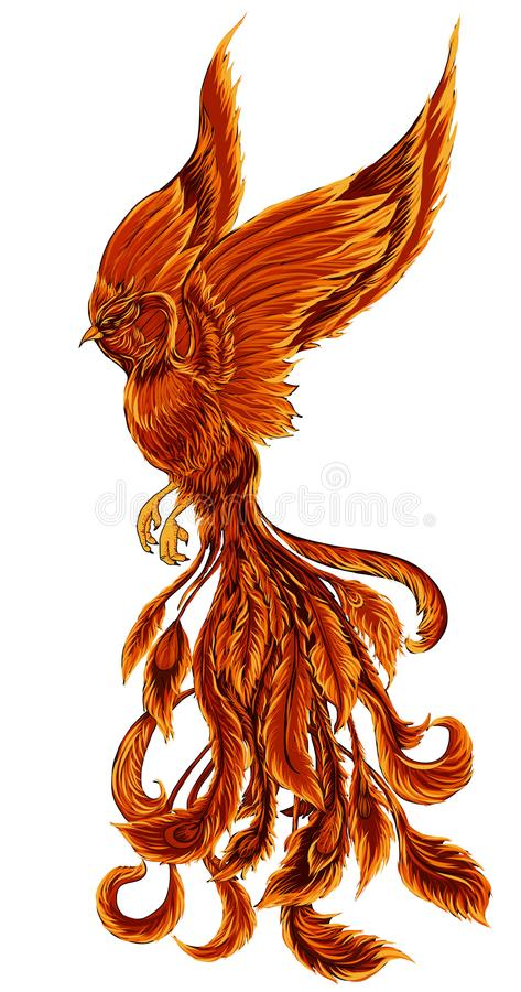 phoenix fire bird illustration and character design hand drawn phoenix tattoo stock vector. Black Bedroom Furniture Sets. Home Design Ideas