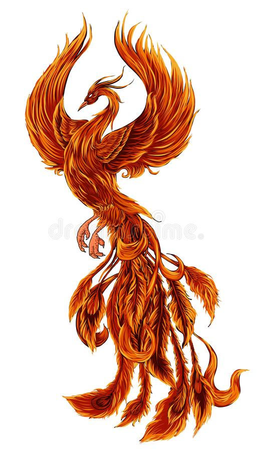 Phoenix Fire bird illustration and character design. Hand drawn Phoenix tattoo. Japanese and Chinese style, Legend of the Firebird is Russian fairy tales and it royalty free illustration