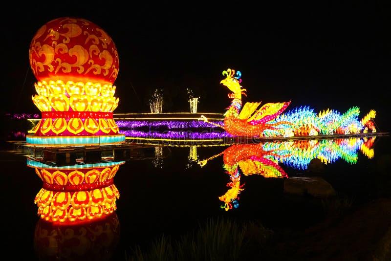 Phoenix lyktor i Kina royaltyfria bilder