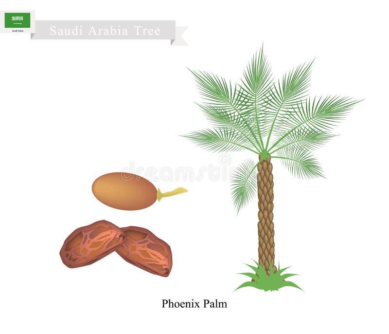 Phoenix Palm, A National Tree of Saudi Arabia stock illustration