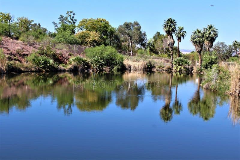 Phoenix zoo, Arizona mitt för naturvård, Phoenix, Arizona, Förenta staterna royaltyfri bild